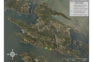 Forage Fish Survey Sites