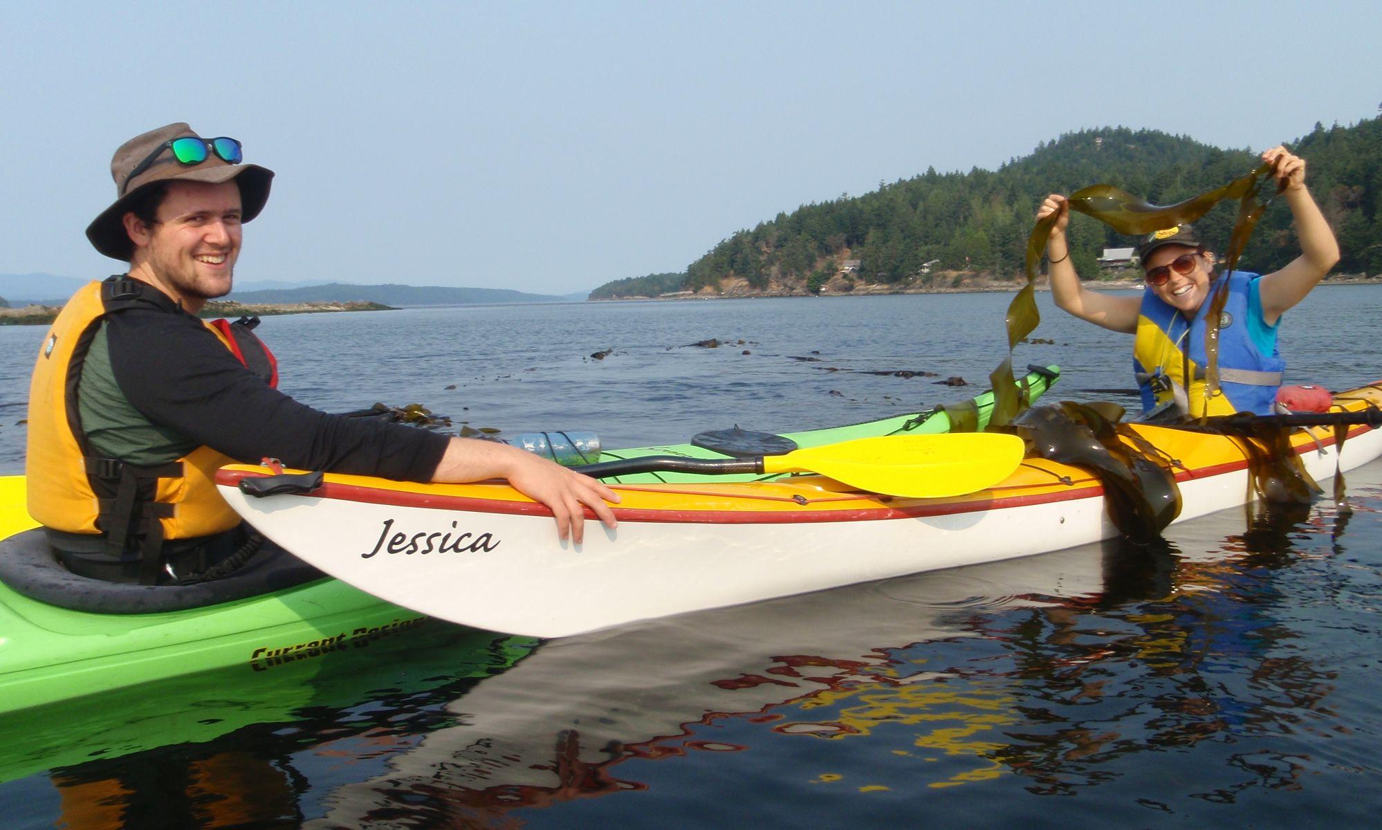 Kelp bed monitoring by kayak