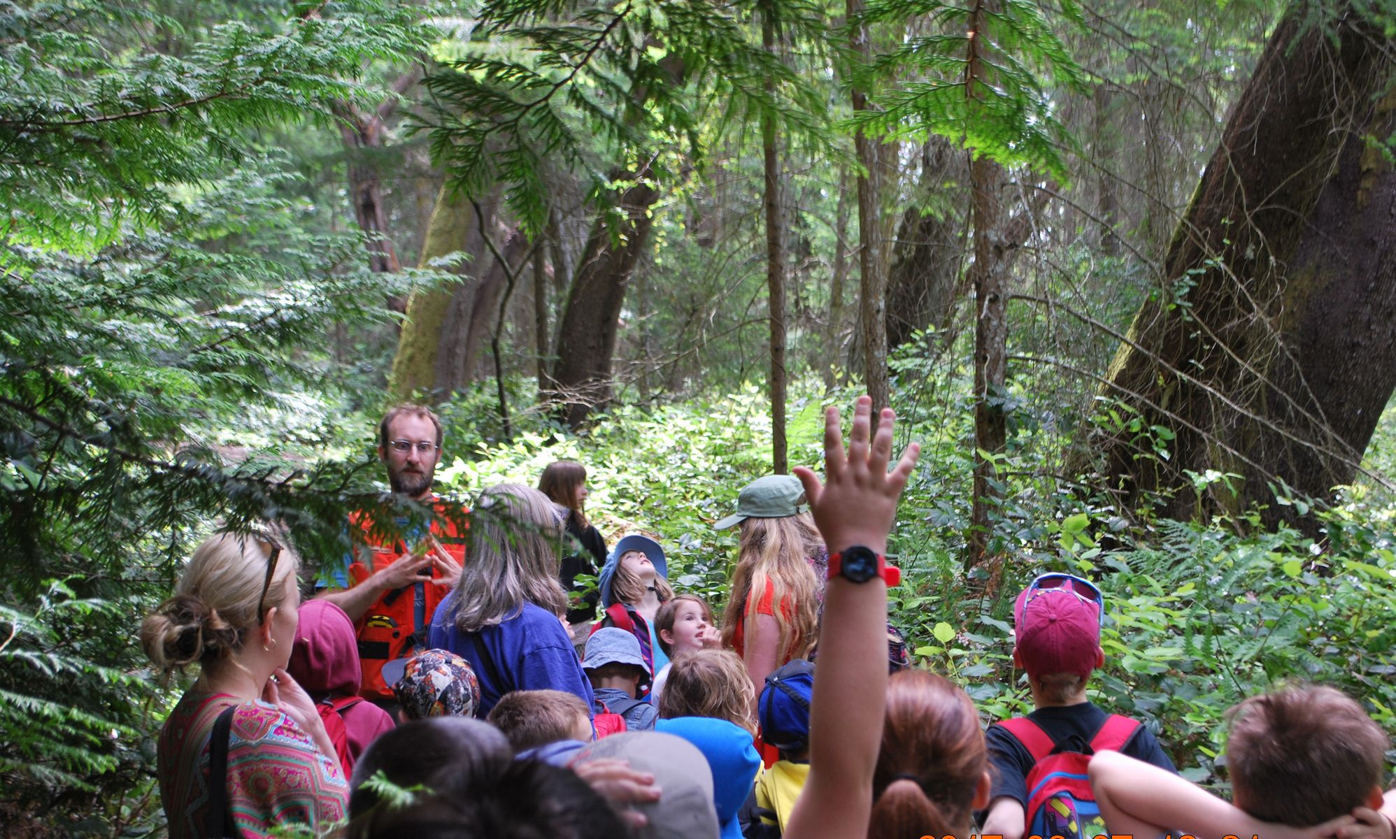 Students ask questions during an outdoor lesson about forests.