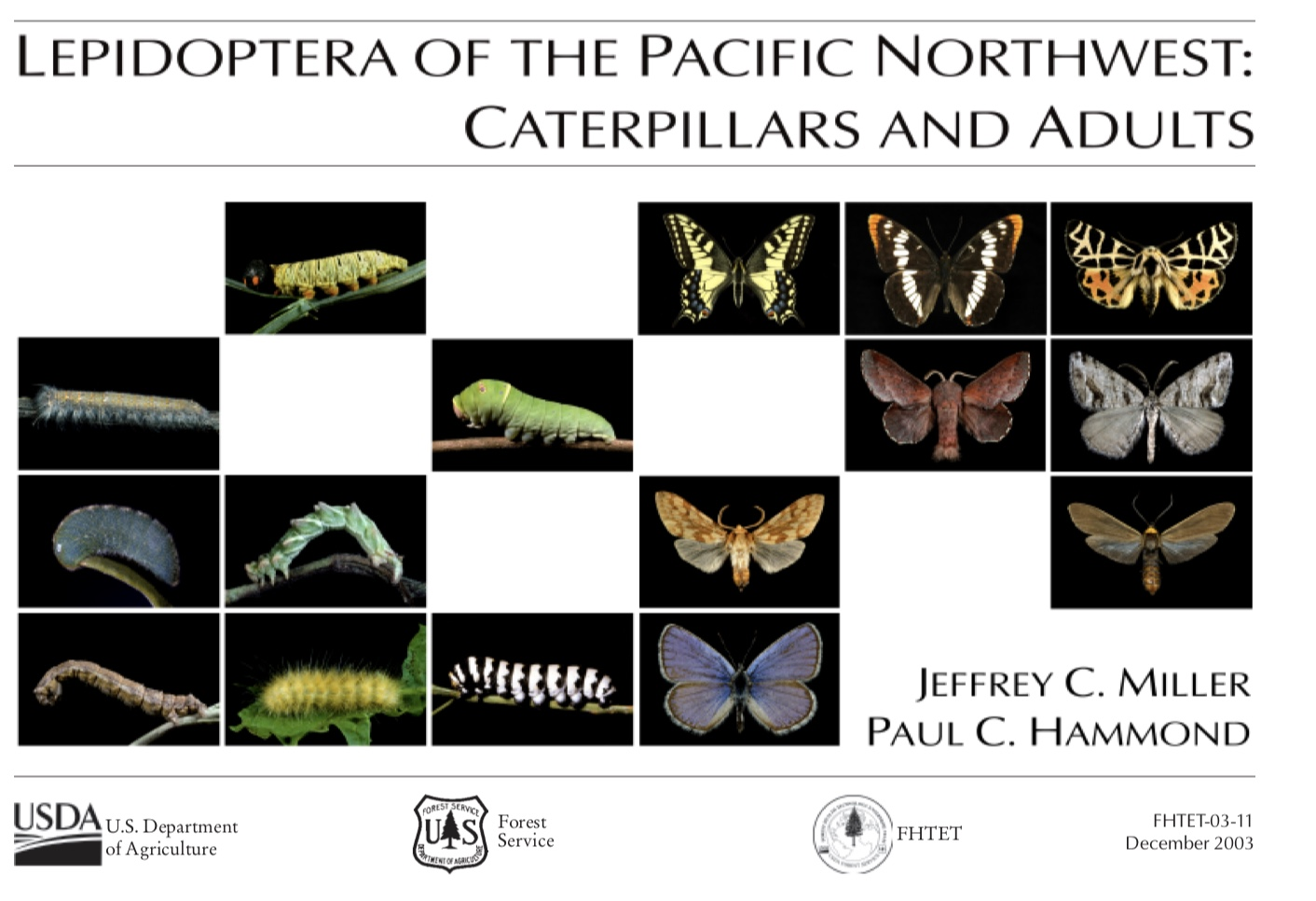 lepidoptera cover