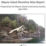 shoreline atlas