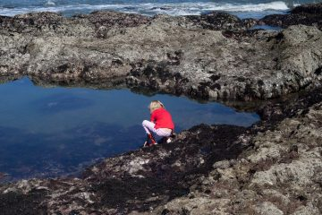 Exploring a tide pool. Photo: Andrea Ismert