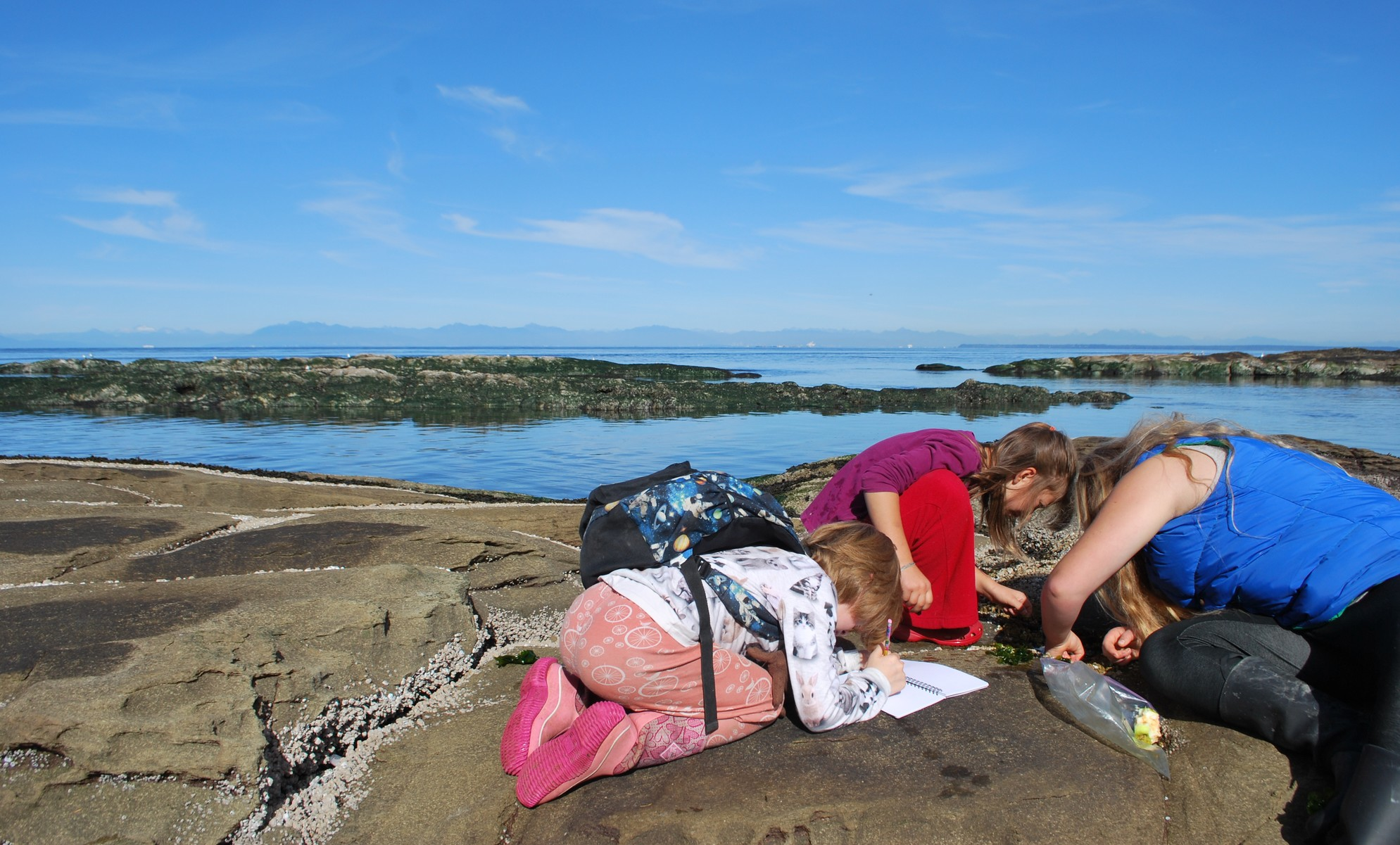 A rocky shoreline with students taking notes.