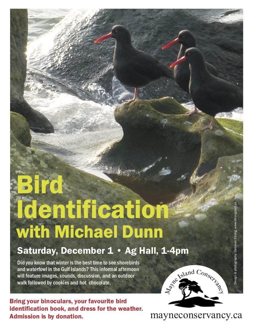 Bird ID Poster
