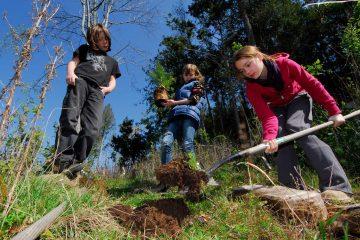 student tree planters