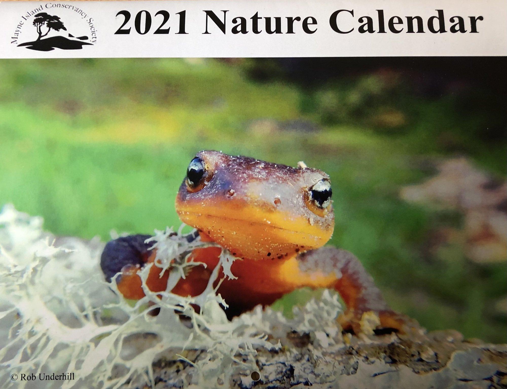 calendar front cover